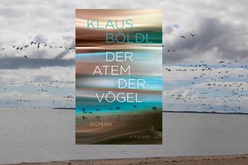 Klaus Böldl Der Atem der Vögel Fischer