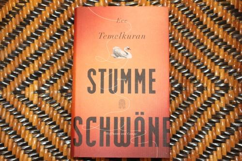 Ece Temelkuran Stumme Schwäne Hoffmann und Campe