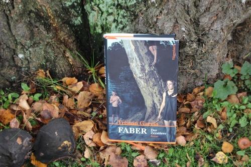 Tristan Garcia Faber der Zerstörer Wagenbach Verlag