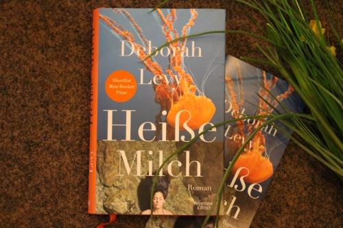 Deborah Levy Heiße Milch Kipenheuer & Witsch Kiwi