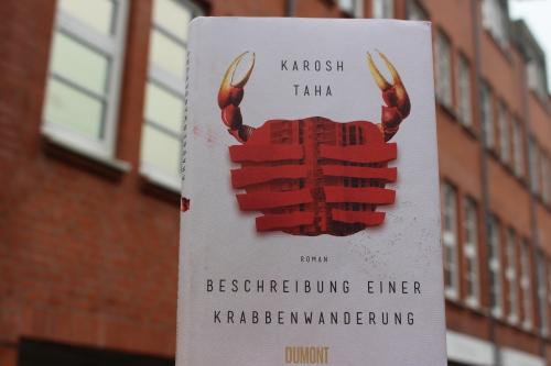 Karosh Taha Beschreibung einer Krabbenwanderung Dumont