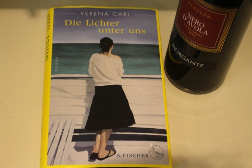 Verena Carl Die Lichter unter uns Fischer Verlag