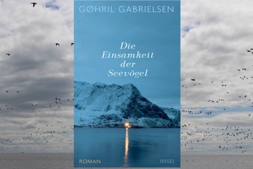 Die Einsamkeit der Seevögel Insel Verlag
