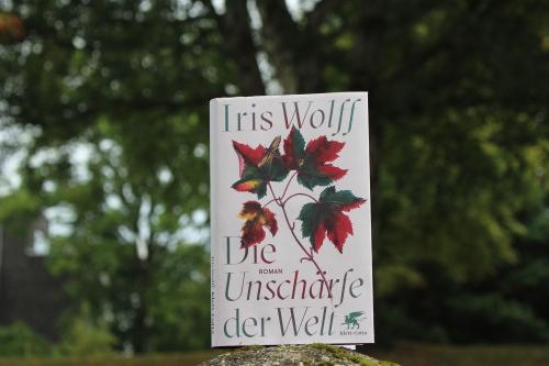 Iris Wolff Die Unschärfe der Welt